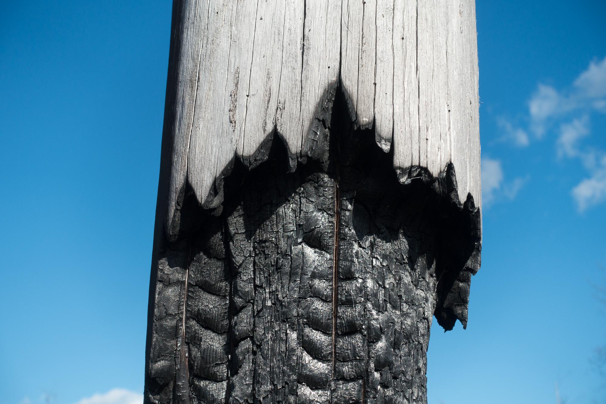 Hälleskog-Totempole3